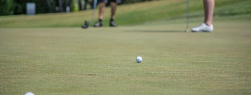 Golf Putter Image