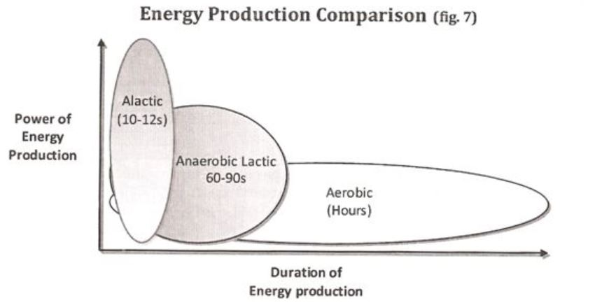 Bodies Energy Systems